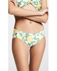 Palmacea Limoncello Bikini Bottoms - Green
