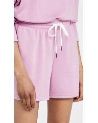 BB Dakota Go Long Shorts - Purple