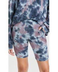 Honeydew Intimates Daze Off Biker Shorts - Blue