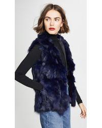 Adrienne Landau Fur Accent Vest - Blue