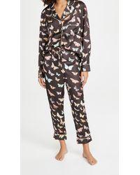 Karen Mabon Moths Long Pyjama Set - Brown