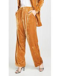 Endless Rose Velvet Wide Leg Pants - Yellow