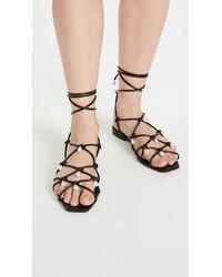 Altuzarra Lace Up Sandals - Black