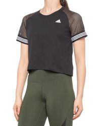 adidas 3-stripe Ringer Crop T-shirt - Black