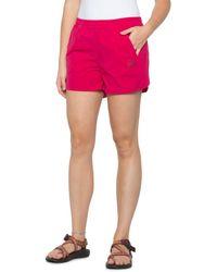 Mammut Crashiano Shorts - Pink