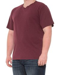 Prana V-neck T-shirt - Purple