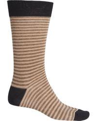 Pantherella Contrast Heel And Toe Striped Socks - Black