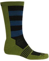 Wigwam IronMan Spectrum Pro Low Cut Sock