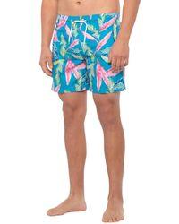 Trunks Surf & Swim Neon Leaf Sano Printed Swim Trunks - Blue