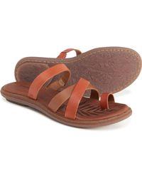 Born Cetina Sandals - Brown