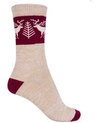 Born - Deer Tree Boot Socks - Lyst