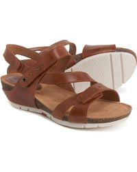 Josef Seibel Hailey 33 Wedge Sandals - Brown
