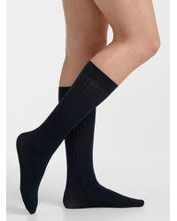 Memoi Dark Knee - Blue