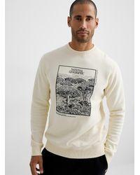 Tentree National Geographic Dragon's Blood Sweatshirt - White