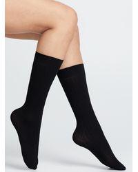 Memoi Dark Knee - Black