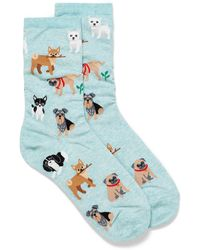 Hot Sox Little Dog Socks - Blue