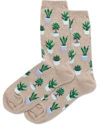 Hot Sox Green Space Socks