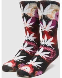 Huf Chaussettes Digital Plantlife - Multicolore