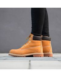Timberland Classic Premium 6-in Waterproof 12909 - Yellow