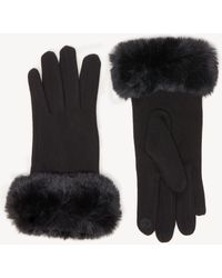 Sole Society Solid Faux Fur Trimmed Gloves - Black