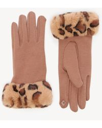 Sole Society Leopard Faux Fur Trim Gloves - Multicolor