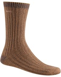 Sorel Merino Basic Crew Socks - Brown