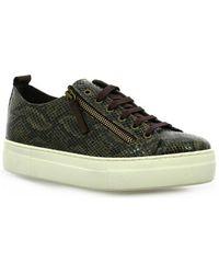 So Send - Baskets cuir nubuck serpent Chaussures - Lyst