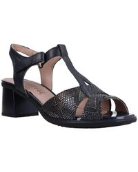 Pitillos 6172 V20 Sandals - Blue