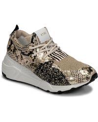 Steve Madden Lage Sneakers Cliff - Meerkleurig