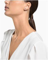 Swarovski Boucles d'oreilles Attract Boucles oreilles - Blanc