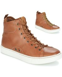 Polo Ralph Lauren Hoge Sneakers Dleaney - Bruin