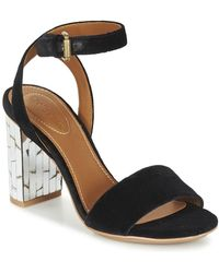 See By Chloé - Sb28001 Women's Sandals In Black - Lyst