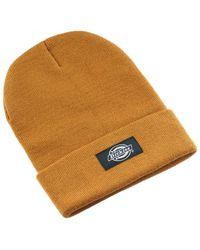 Dickies Muts Yonkers Beanie Hat - Bruin