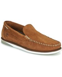 Timberland Chaussures - Marron