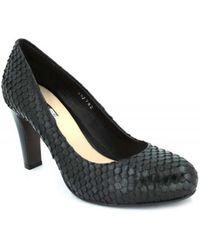 Elvio Zanon C4401X Chaussures escarpins - Noir