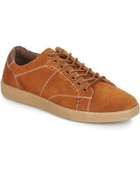 André Lage Sneakers Lenno - Bruin