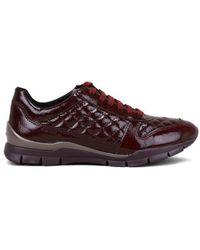 Geox Sneakers D Sukie - Rood