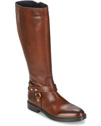 Tommy Hilfiger - Holly 5a Women's High Boots In Brown - Lyst