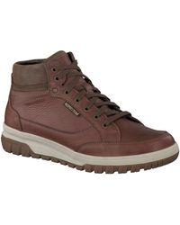 Mephisto Hoge Sneakers Paddy - Bruin