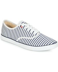 André Sneakers Mariniere - Blauw
