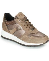 Geox Lage Sneakers Tabelya - Naturel