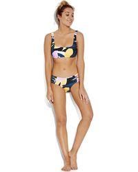 Seafolly Haut de Bikini Brassiere Bonnet D Blue Print - Cut Copy Maillots de bain - Bleu