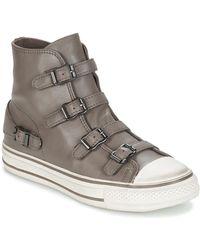 Ash Hoge Sneakers Virgin - Grijs