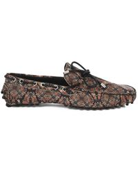 Roberto Cavalli S12WR0035 (08580) Chaussures - Marron