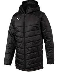 PUMA - Daunenjacken Sport Liga Sideline Bench Jacket 655298-03 - Lyst