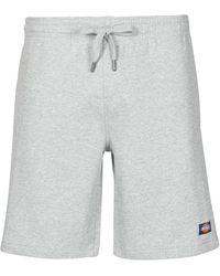 Dickies Pantaloni Corti Champlin - Grigio