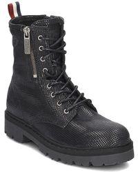 Tommy Hilfiger Folly 1z Women's Low Ankle Boots In Black