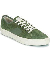 Globe Sneakers Surplus - Verde
