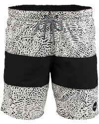 O'neill Sportswear PM Cross pattern short - Multicolore