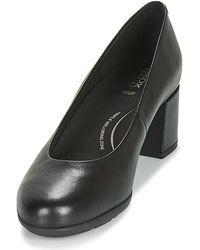 Geox Chaussures - Noir